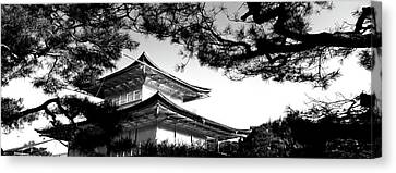 Low Angle View Of Trees In Front Canvas Print by Panoramic Images