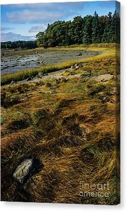 Low Tide Reach Road Canvas Print by Thomas R Fletcher