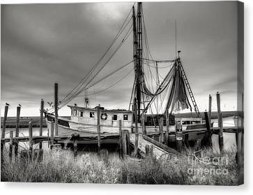 Net Canvas Print - Lowcountry Shrimp Boat by Scott Hansen