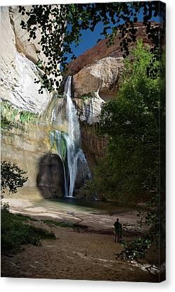 Bonding Canvas Print - Lower Calf Creek Falls by Jim West