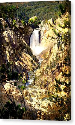 Lower Falls 2 Canvas Print by Marty Koch