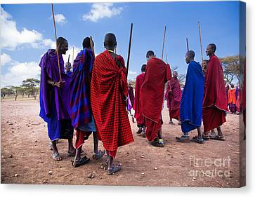 Maasai Men In Their Ritual Dance In Their Village In Tanzania Canvas Print by Michal Bednarek