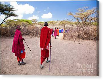 Maasai People And Their Village In Tanzania Canvas Print by Michal Bednarek