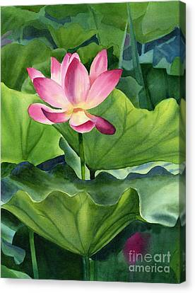 Magenta Lotus Blossom Canvas Print by Sharon Freeman