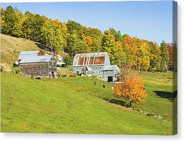 Maine Farm On Side Of Hill In Autumn Canvas Print