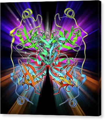 Malignant Brain-tumor-like Protein Canvas Print by Laguna Design