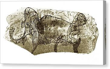Mammoth, Prehistoric Bone Art Canvas Print by Sheila Terry
