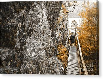 Man Hiking In Cradle Mountain Tasmania Australia Canvas Print by Jorgo Photography - Wall Art Gallery