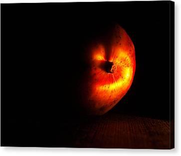 Mango After Dark Canvas Print by Tom Druin