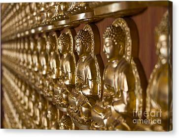 Many Image Of Buddha On Wall Canvas Print