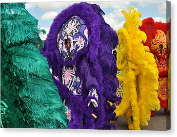 Mardi Gras Indians Canvas Print by Diane Lent