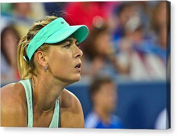 Maria Sharapova Canvas Print by David Long
