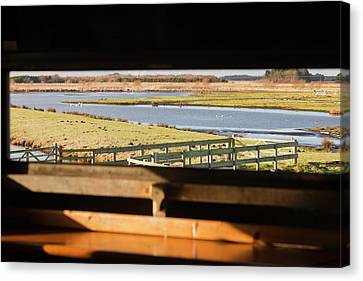 Flooding Canvas Print - Martin Mere Bird Reserve by Ashley Cooper