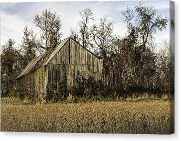 Maryland Barns Canvas Print