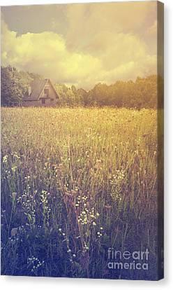 Mountain Cabin Canvas Print - Meadow by Jelena Jovanovic