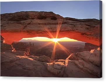 Mesa Arch Canvas Print by Darryl Wilkinson