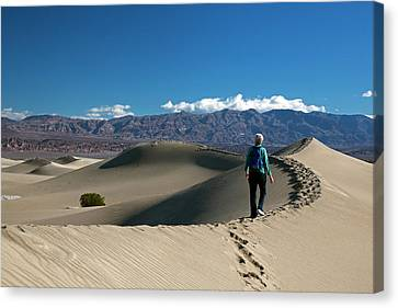 Mesquite Flat Sand Dunes Canvas Print by Jim West