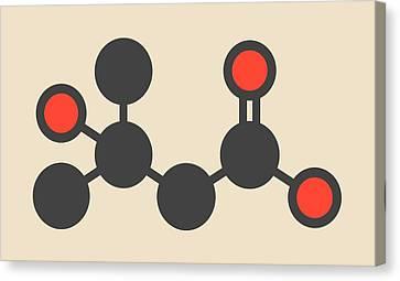 Metabolite Molecule Canvas Print by Molekuul