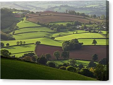 Mid Devon Fields Canvas Print by Pete Hemington