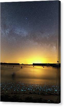 Milky Way Over Bioluminescent Plankton Canvas Print