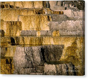 Minerva Terrace Canvas Print by Tracy Knauer