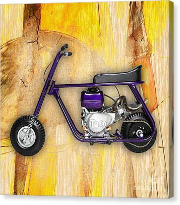 Mini Bike Taco 22 Canvas Print