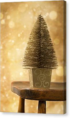 Miniature Christmas Tree Canvas Print by Amanda Elwell