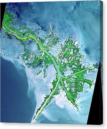 Cosmology Canvas Print - Mississippi River Delta by Celestial Images
