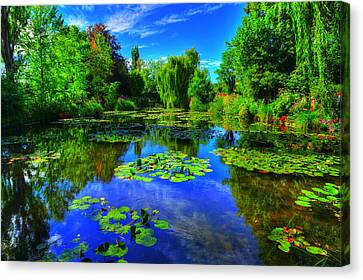 Monet's Lily Pond Canvas Print by Midori Chan