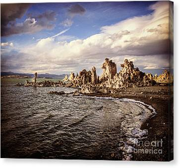 Mono Lake California Canvas Print by Colin and Linda McKie