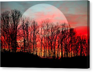 Wow Canvas Print - Moon Dance by Karen Wiles