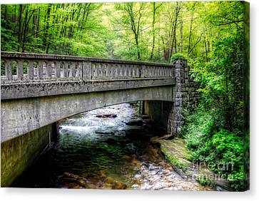 Moore Cove Bridge Canvas Print by Deborah Scannell