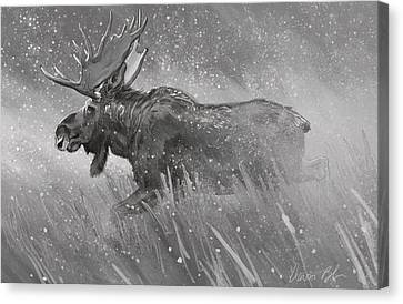 Canvas Print featuring the digital art Moose Sketch by Aaron Blaise