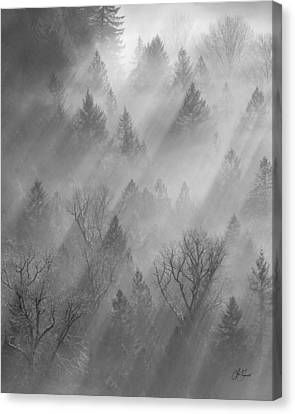 Morning Light -vertical Canvas Print