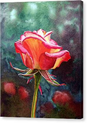 Morning Rose Canvas Print by Irina Sztukowski
