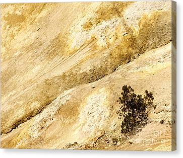 Mount Lassen Canvas Print