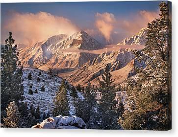 Winter Light Canvas Print - Mountain Light by Chris Moore