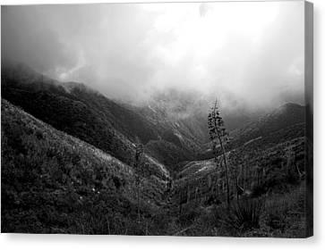 Mountain Valley Black And White Canvas Print by Gilbert Artiaga