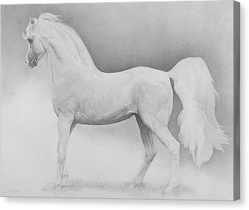 Running Horses Canvas Print - Moving Image by Emma Kennaway