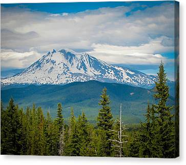 Mt. Adams From Indian Heaven Wilderness Canvas Print by Patricia Babbitt