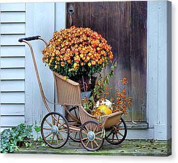 Mums In A Buggy Canvas Print by Janice Drew