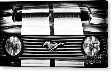 Mustang Front Monochrome  Canvas Print by Tim Gainey