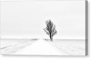 Winter Roads Canvas Print - My Tiny World by Jacob Tuinenga