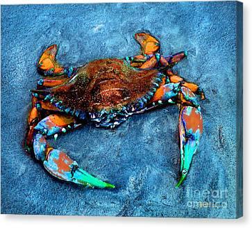 Crabby Blue Canvas Print