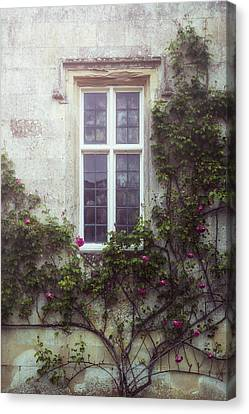 Mysterious Window Canvas Print by Joana Kruse