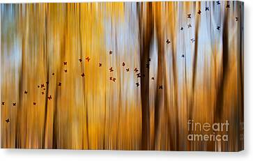 Mystic Forest Canvas Print by Rima Biswas