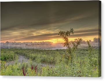 Nature In The Morning Canvas Print by Nick Mares