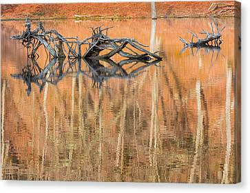 Nature Made Canvas Print by Bill Wakeley