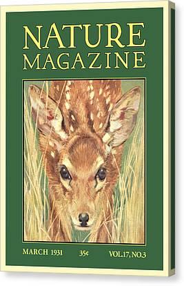 Nature Magazine Canvas Print by Gary Grayson