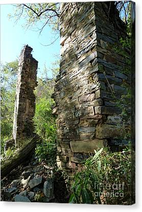 Canvas Print featuring the photograph Nature's Door by Jane Ford
